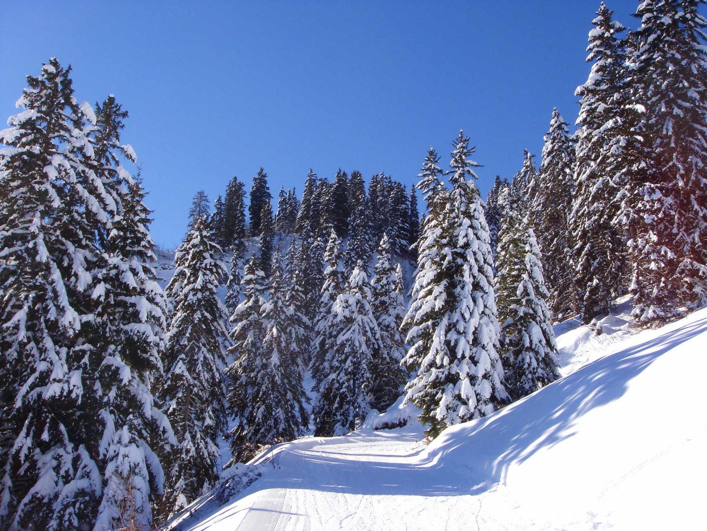 leysin_panorama_hiver3