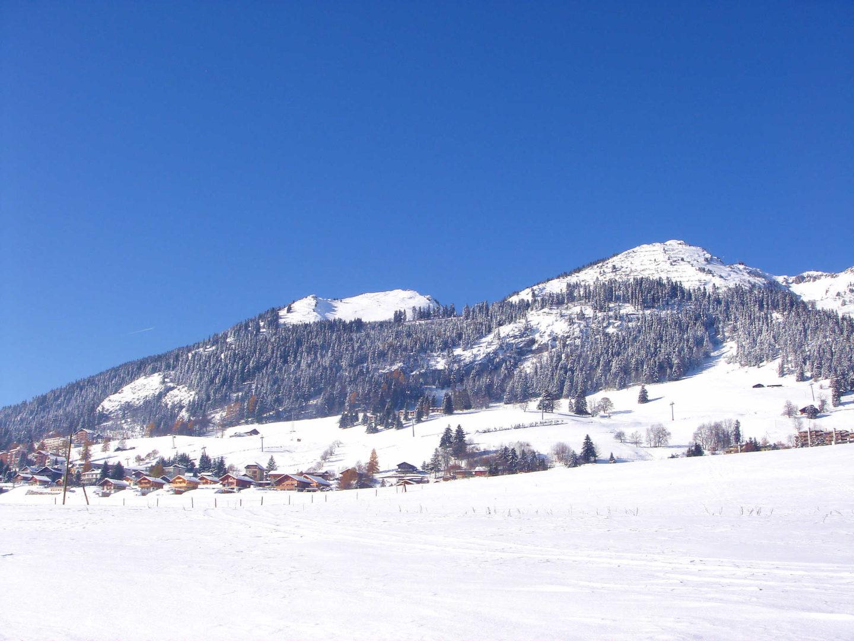 leysin_panorama_hiver4