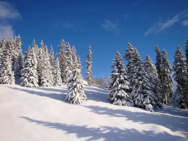 leysin_panorama_hiver8