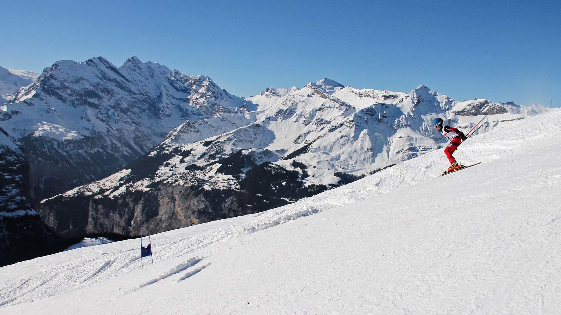 LAS-ski2